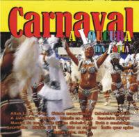 Carnaval A Loucura da Folia